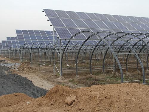 太阳能光伏所发电量,可以支持大棚的灌溉系统,对植物进行补光,解决